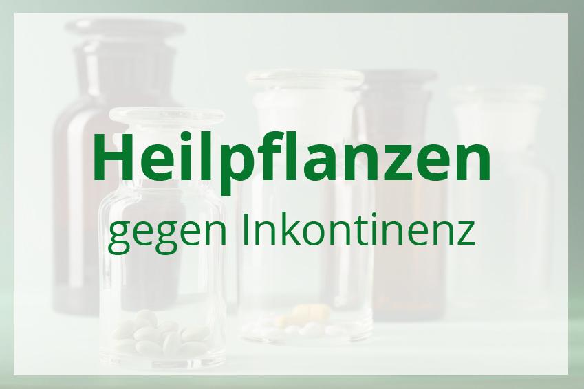 Heilpflanzen gegen Inkontinenz